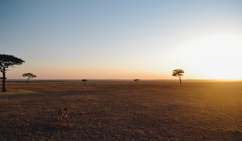 Tanzania, Serengeti
